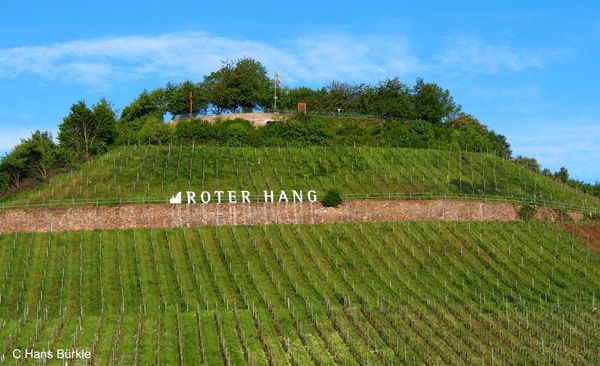Der Rote Hang in Nierstein